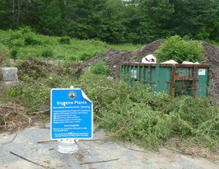Invasive Plants Sign Next to Dumpster of Plants