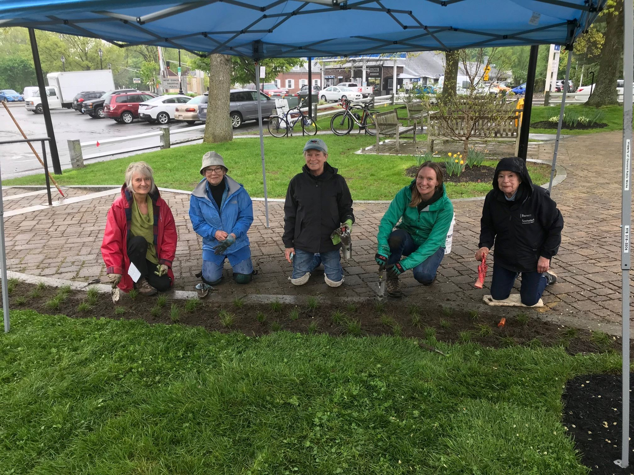 2019-05-17 Junction Sedge Installation Green Thumbs
