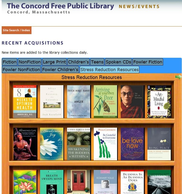 Book List screenshot from the public library